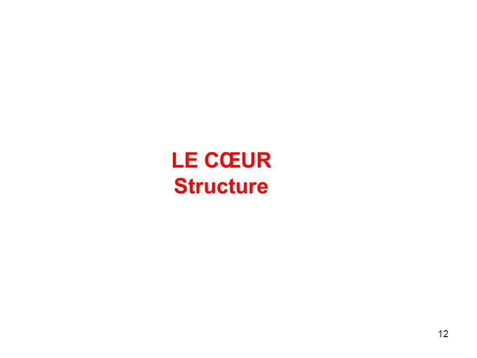 12 LE CŒUR Structure