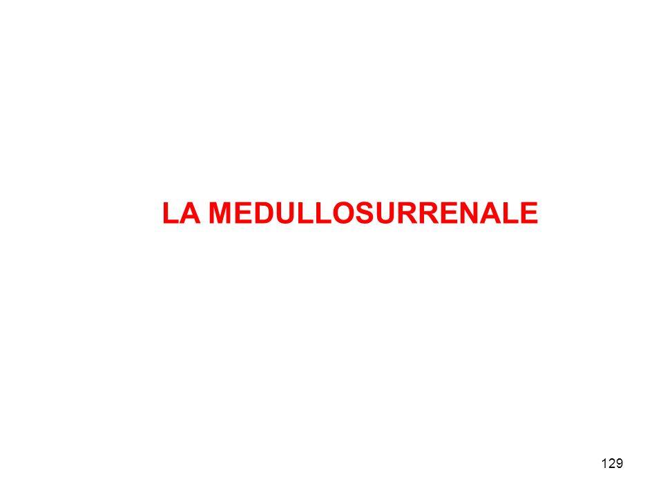 129 LA MEDULLOSURRENALE