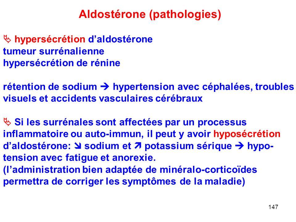147 Aldostérone (pathologies)  hypersécrétion d'aldostérone tumeur surrénalienne hypersécrétion de rénine rétention de sodium  hypertension avec céphalées, troubles visuels et accidents vasculaires cérébraux  Si les surrénales sont affectées par un processus inflammatoire ou auto-immun, il peut y avoir hyposécrétion d'aldostérone:  sodium et  potassium sérique  hypo- tension avec fatigue et anorexie.