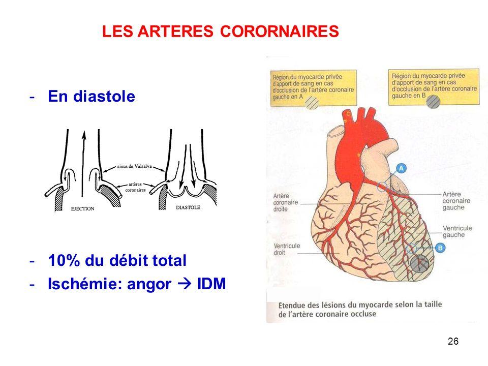 26 -En diastole -10% du débit total -Ischémie: angor  IDM LES ARTERES CORORNAIRES