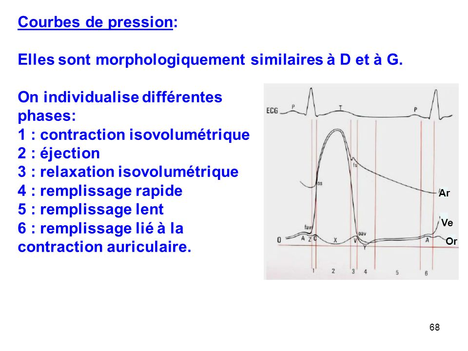 68 Courbes de pression: Elles sont morphologiquement similaires à D et à G.