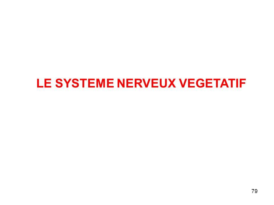 79 LE SYSTEME NERVEUX VEGETATIF
