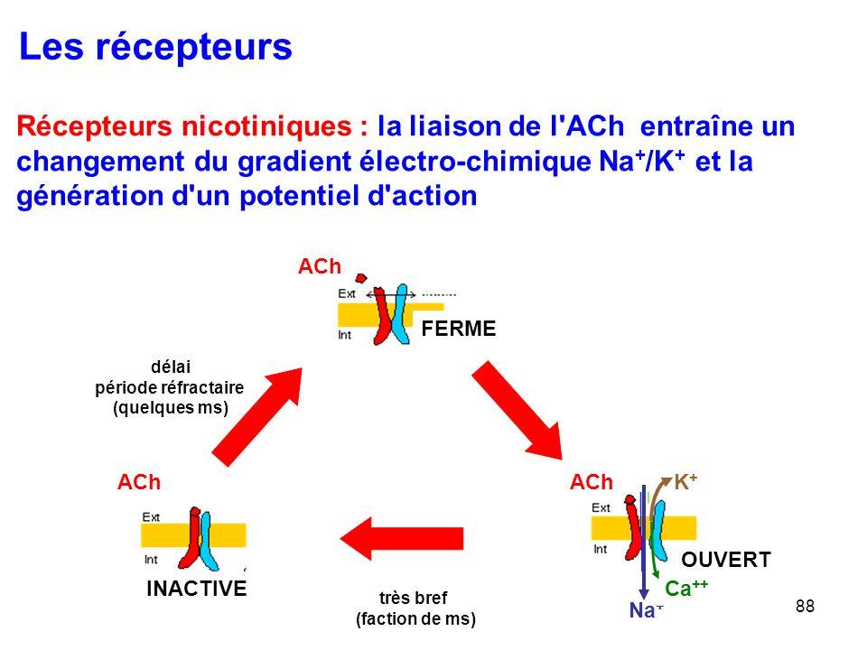 88 Récepteurs nicotiniques : la liaison de l ACh entraîne un changement du gradient électro-chimique Na + /K + et la génération d un potentiel d action Les récepteurs FERME ACh OUVERT ACh Na + Ca ++ K+K+ ACh INACTIVE très bref (faction de ms) délai période réfractaire (quelques ms)
