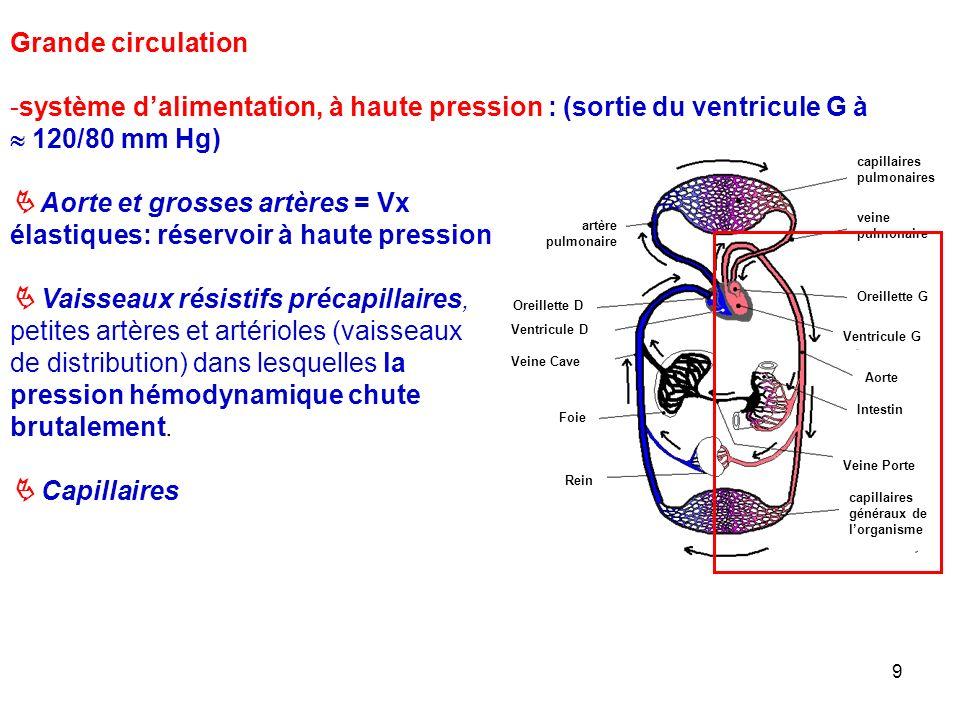 9 capillaires pulmonaires veine pulmonaire Oreillette G Ventricule G Aorte artère pulmonaire Oreillette D Ventricule D Veine Cave Veine Porte capillaires généraux de l'organisme Intestin Foie Rein Grande circulation -système d'alimentation, à haute pression : (sortie du ventricule G à  120/80 mm Hg)  Aorte et grosses artères = Vx élastiques: réservoir à haute pression  Vaisseaux résistifs précapillaires, petites artères et artérioles (vaisseaux de distribution) dans lesquelles la pression hémodynamique chute brutalement.