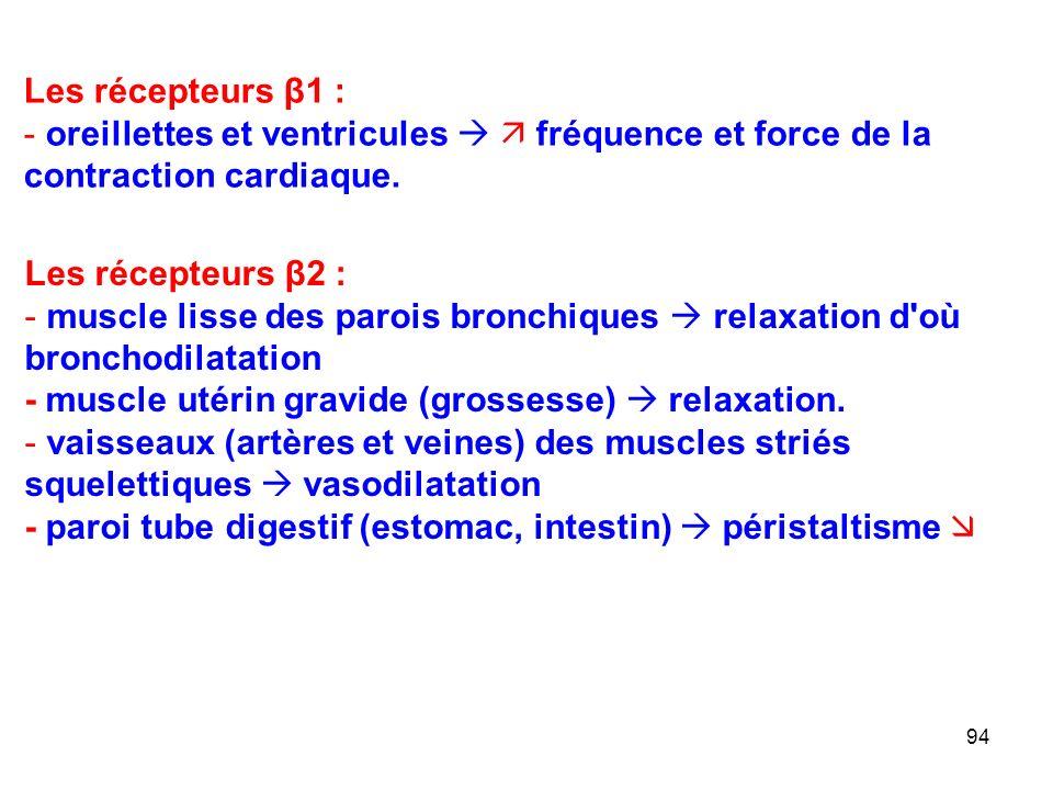 94 Les récepteurs β1 : - oreillettes et ventricules   fréquence et force de la contraction cardiaque.