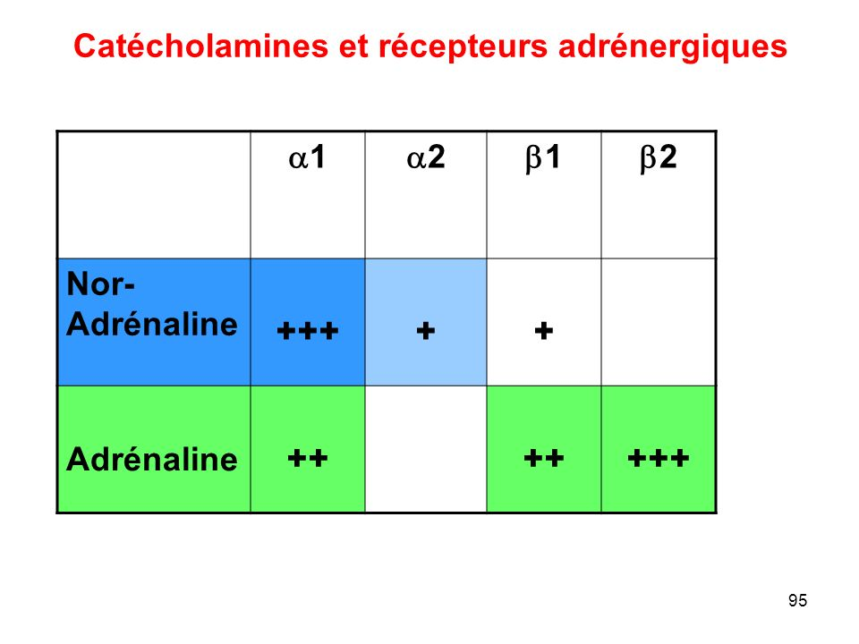 95 Catécholamines et récepteurs adrénergiques 11 22 11 22 Nor- Adrénaline +++++ Adrénaline ++ +++