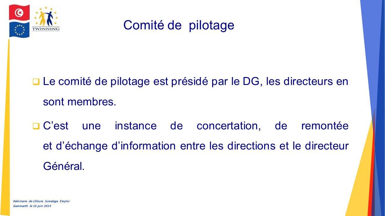 Séminaire de clôture Jumelage Emploi Gammarth le 16 juin 2014 Comité de pilotage  Le comité de pilotage est présidé par le DG, les directeurs en sont membres.