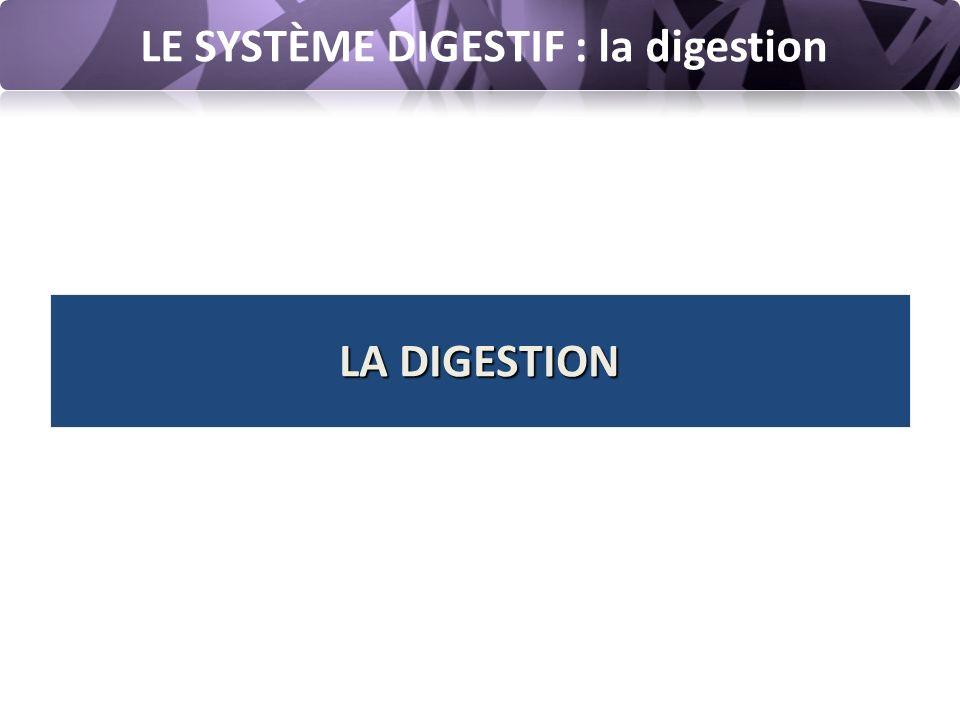 LE SYSTÈME DIGESTIF : la digestion Le rôle essentiel de l'appareil digestif est d'assimiler, d'absorber les nutriments dans la circulation sanguine et lymphatique puis d'éliminer les éléments non assimilables.
