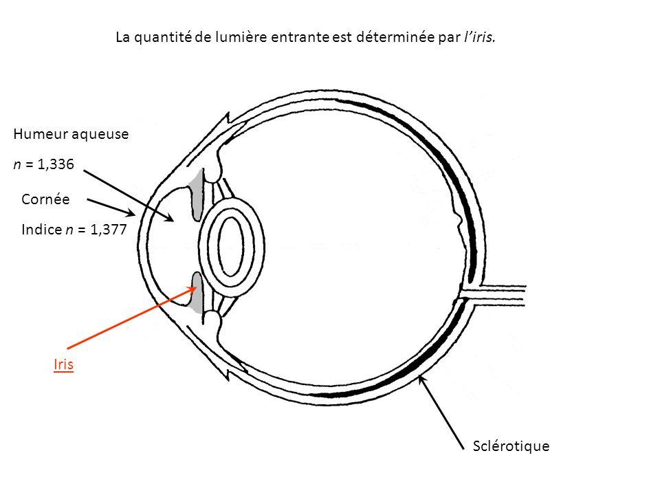 La quantité de lumière entrante est déterminée par l'iris.