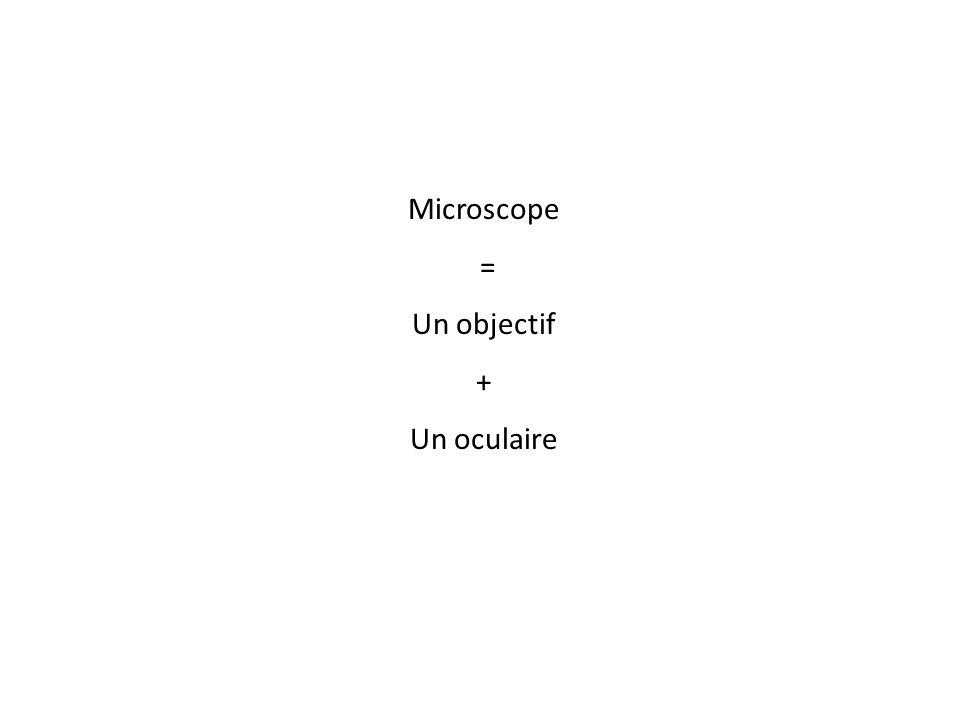 Microscope = Un objectif + Un oculaire