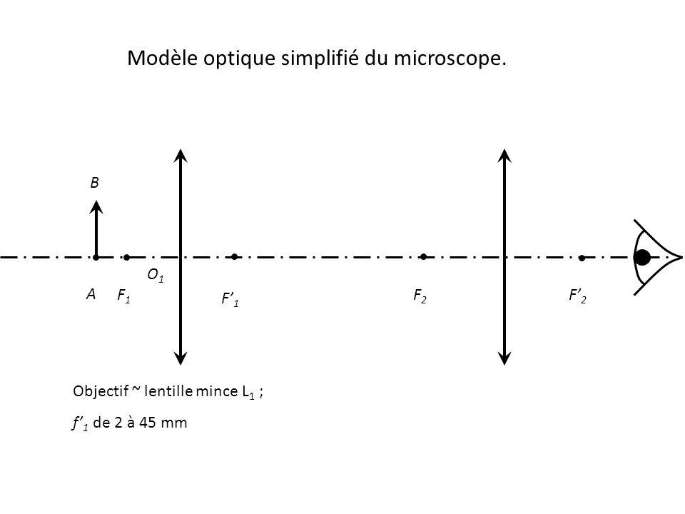 Modèle optique simplifié du microscope.