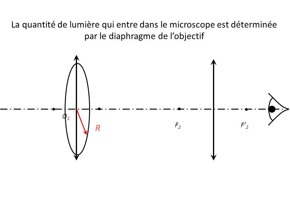 La quantité de lumière qui entre dans le microscope est déterminée par le diaphragme de l'objectif O1O1 F' 2 F2F2 R