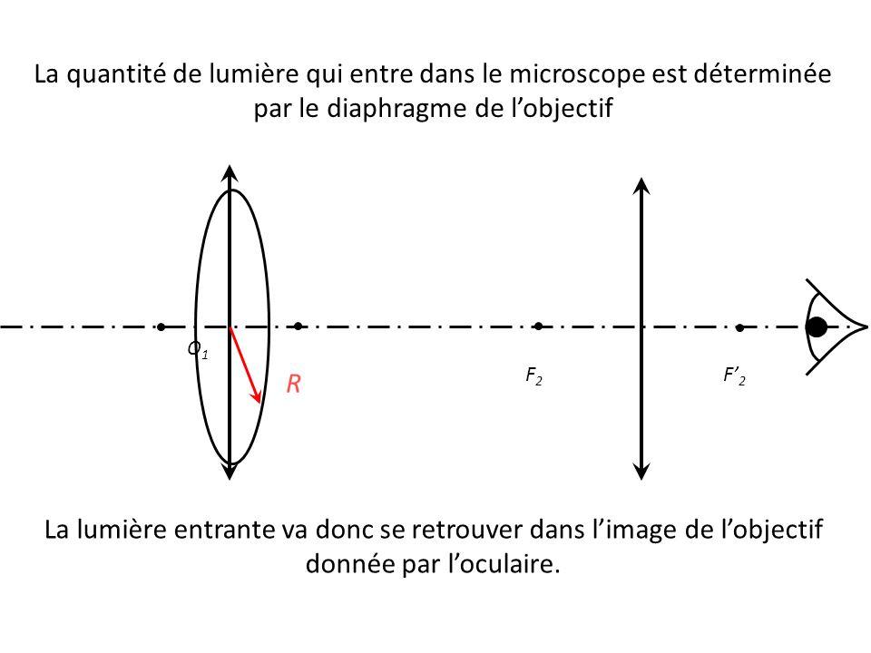 La quantité de lumière qui entre dans le microscope est déterminée par le diaphragme de l'objectif O1O1 F' 2 F2F2 R La lumière entrante va donc se retrouver dans l'image de l'objectif donnée par l'oculaire.