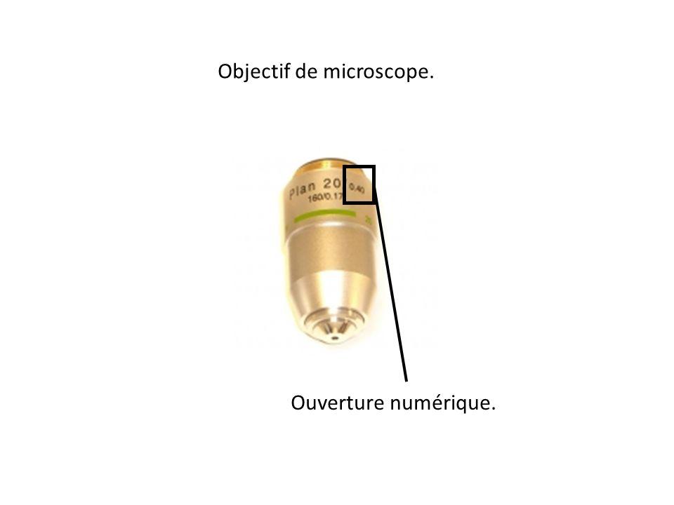 Objectif de microscope. Ouverture numérique.