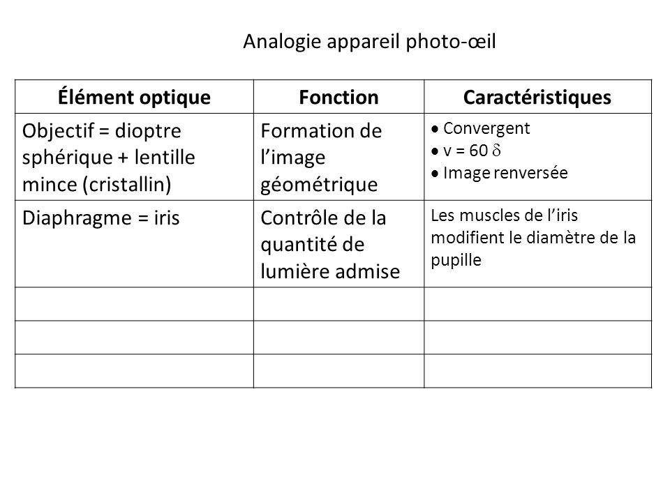 Élément optiqueFonctionCaractéristiques Objectif = dioptre sphérique + lentille mince (cristallin) Formation de l'image géométrique  Convergent  v = 60   Image renversée Diaphragme = irisContrôle de la quantité de lumière admise Les muscles de l'iris modifient le diamètre de la pupille Analogie appareil photo-œil