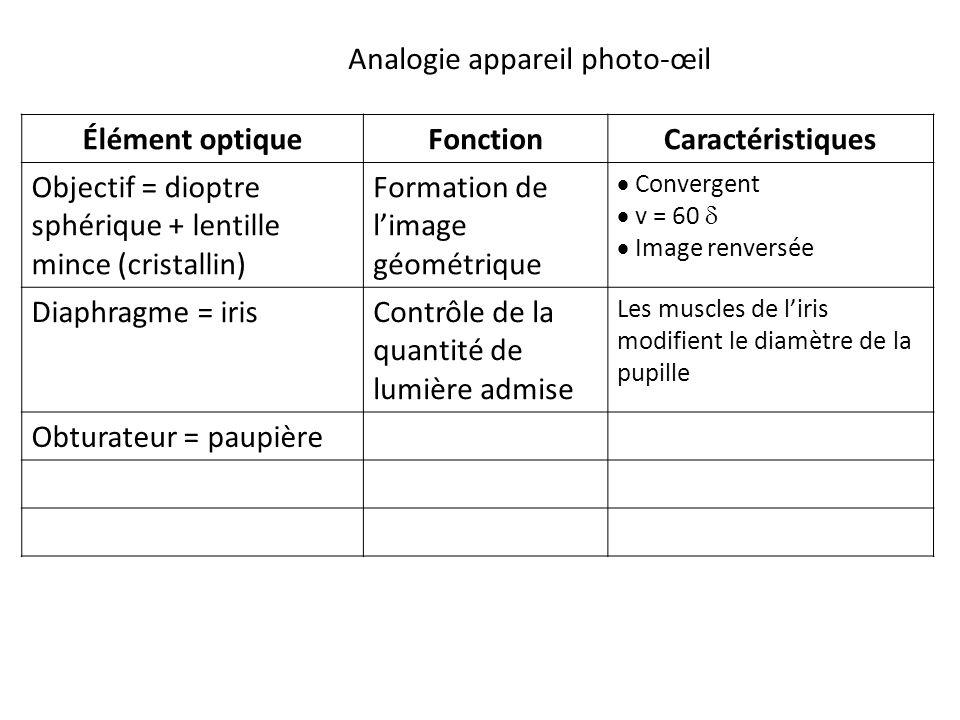 Élément optiqueFonctionCaractéristiques Objectif = dioptre sphérique + lentille mince (cristallin) Formation de l'image géométrique  Convergent  v = 60   Image renversée Diaphragme = irisContrôle de la quantité de lumière admise Les muscles de l'iris modifient le diamètre de la pupille Obturateur = paupière Analogie appareil photo-œil