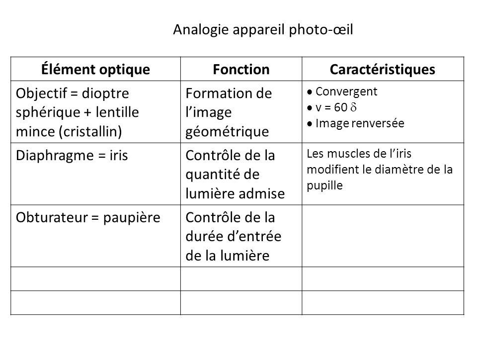 Élément optiqueFonctionCaractéristiques Objectif = dioptre sphérique + lentille mince (cristallin) Formation de l'image géométrique  Convergent  v = 60   Image renversée Diaphragme = irisContrôle de la quantité de lumière admise Les muscles de l'iris modifient le diamètre de la pupille Obturateur = paupièreContrôle de la durée d'entrée de la lumière Analogie appareil photo-œil