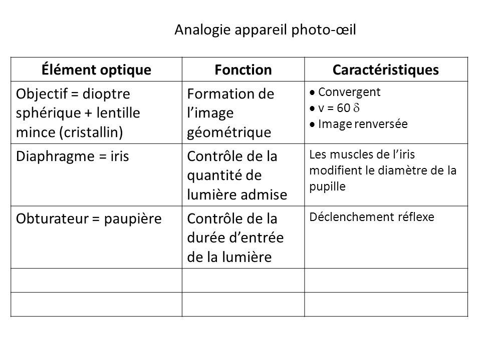Élément optiqueFonctionCaractéristiques Objectif = dioptre sphérique + lentille mince (cristallin) Formation de l'image géométrique  Convergent  v = 60   Image renversée Diaphragme = irisContrôle de la quantité de lumière admise Les muscles de l'iris modifient le diamètre de la pupille Obturateur = paupièreContrôle de la durée d'entrée de la lumière Déclenchement réflexe Analogie appareil photo-œil