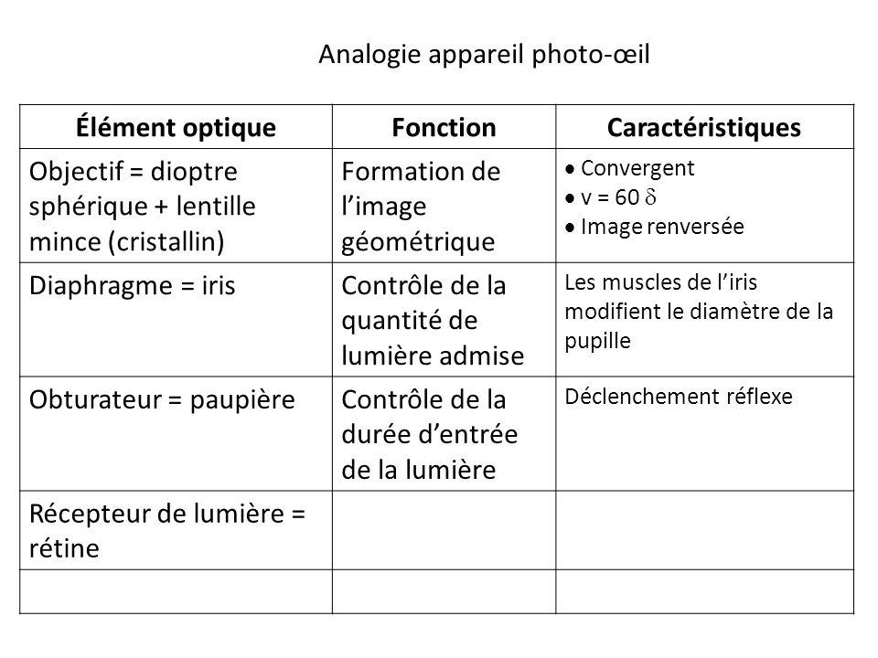 Élément optiqueFonctionCaractéristiques Objectif = dioptre sphérique + lentille mince (cristallin) Formation de l'image géométrique  Convergent  v = 60   Image renversée Diaphragme = irisContrôle de la quantité de lumière admise Les muscles de l'iris modifient le diamètre de la pupille Obturateur = paupièreContrôle de la durée d'entrée de la lumière Déclenchement réflexe Récepteur de lumière = rétine Analogie appareil photo-œil