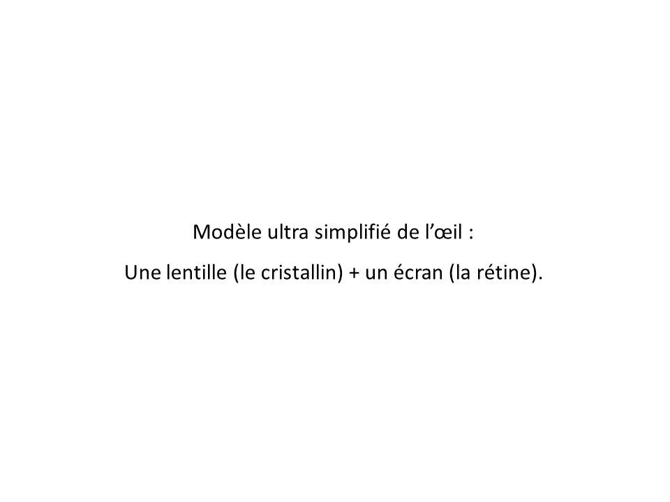 Modèle ultra simplifié de l'œil : Une lentille (le cristallin) + un écran (la rétine).