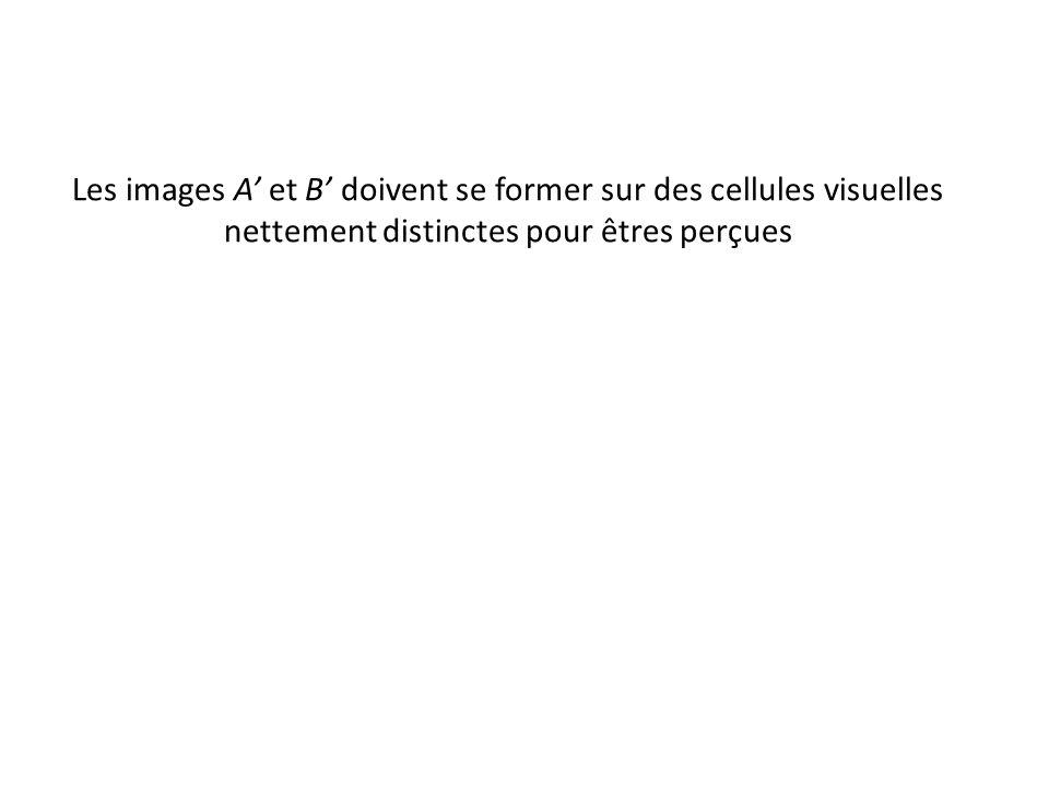 Les images A' et B' doivent se former sur des cellules visuelles nettement distinctes pour êtres perçues
