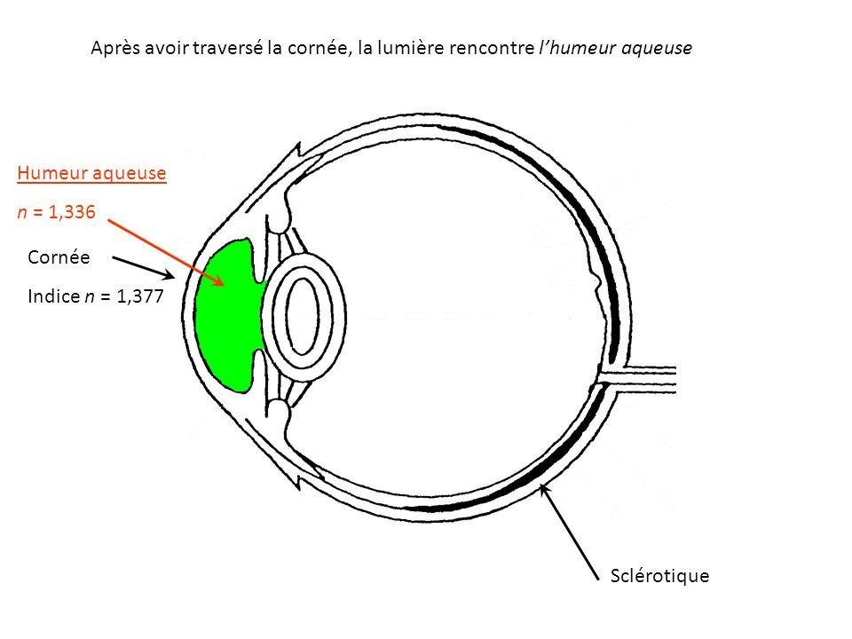 Après avoir traversé la cornée, la lumière rencontre l'humeur aqueuse Humeur aqueuse n = 1,336 Cornée Indice n = 1,377 Sclérotique