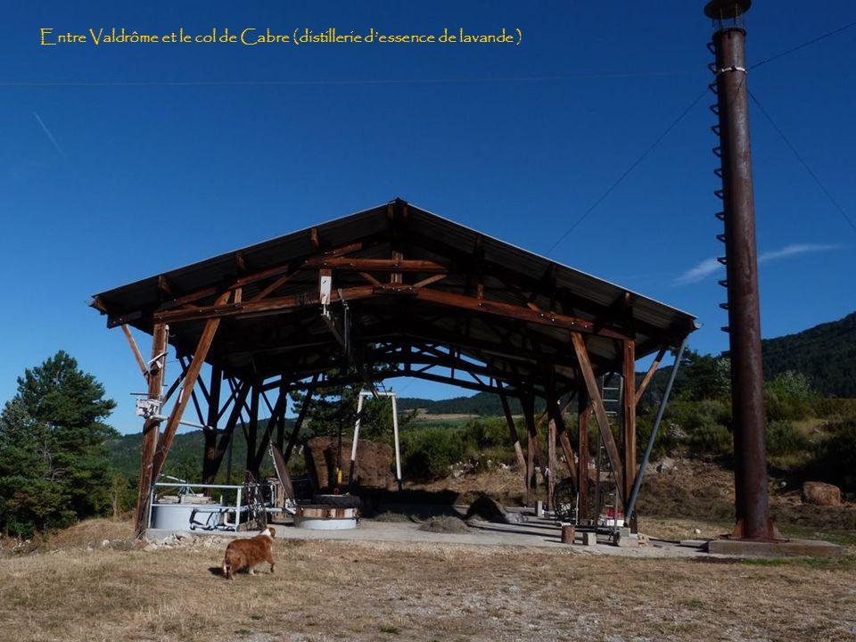 Entre Valdrome et le col de Cabre ( Diois )