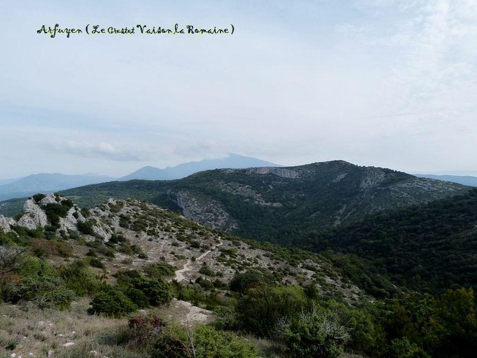 Entre Valdrôme et le col de Cabre (distillerie d'essence de lavande )
