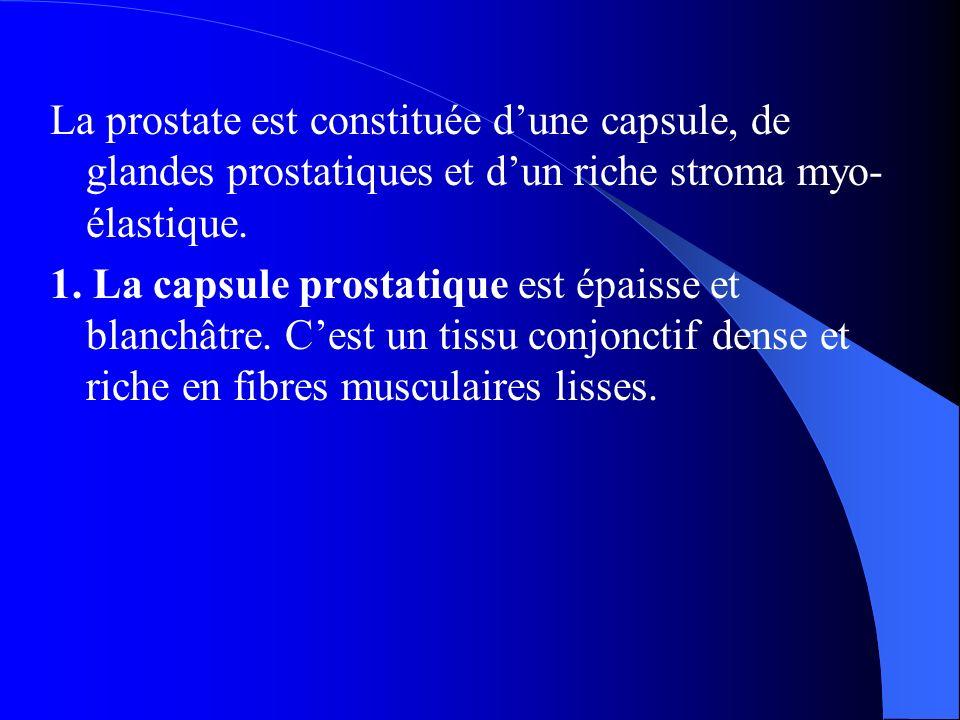 La prostate est constituée d'une capsule, de glandes prostatiques et d'un riche stroma myo- élastique. 1. La capsule prostatique est épaisse et blanch