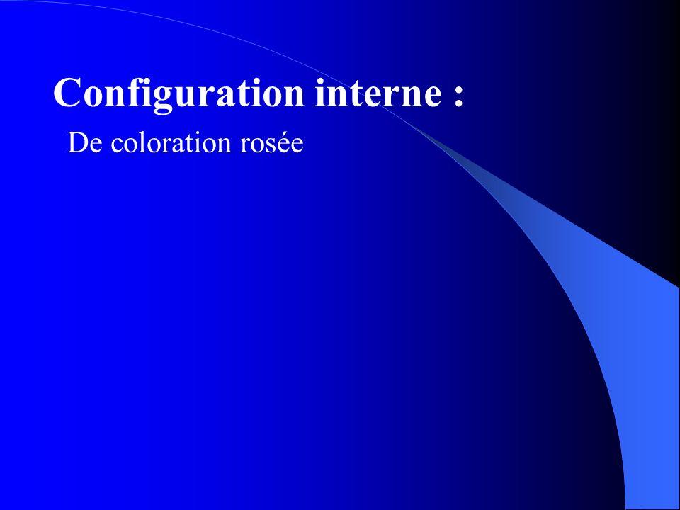 Configuration interne : De coloration rosée