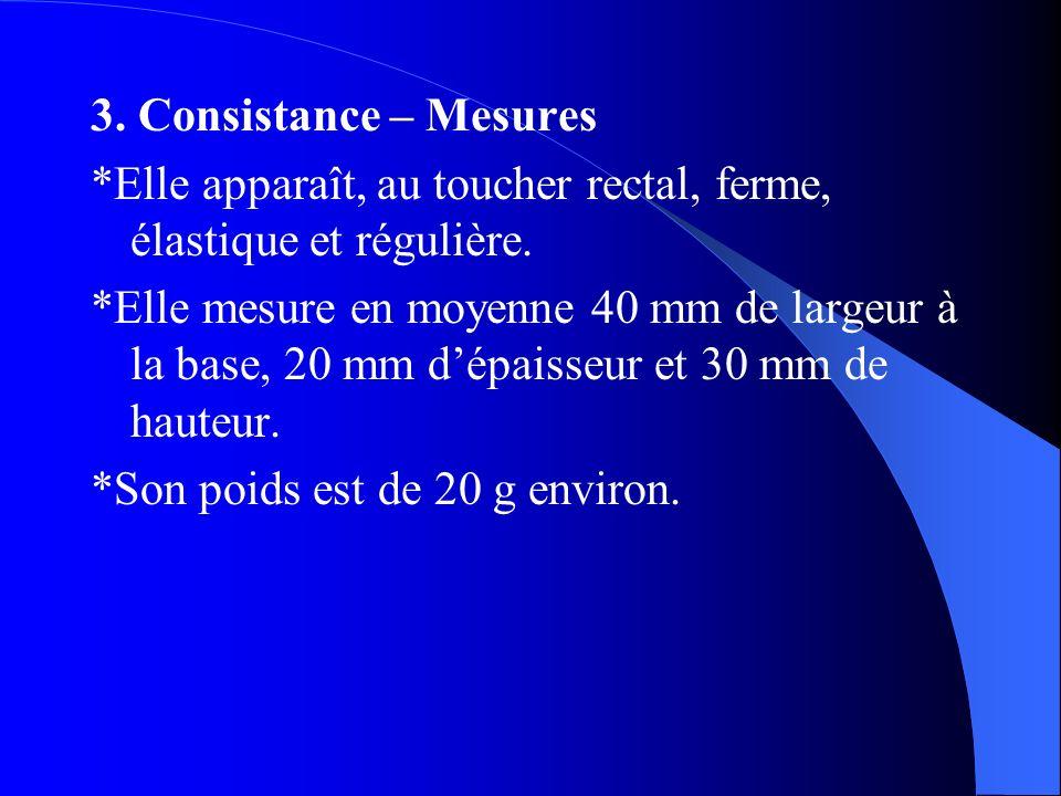 3. Consistance – Mesures *Elle apparaît, au toucher rectal, ferme, élastique et régulière. *Elle mesure en moyenne 40 mm de largeur à la base, 20 mm d