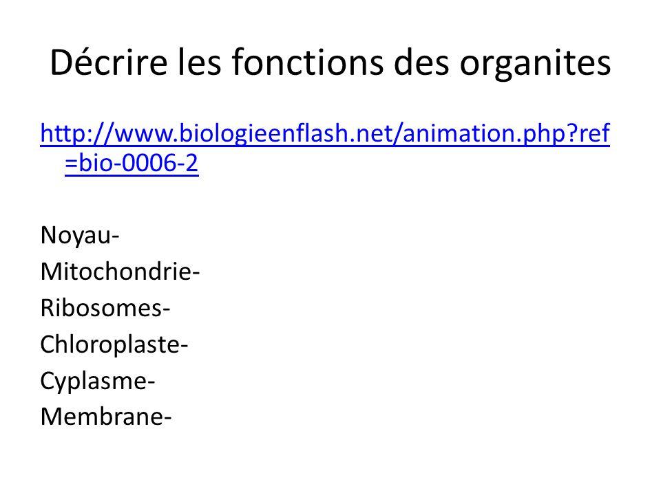 Décrire les fonctions des organites http://www.biologieenflash.net/animation.php ref =bio-0006-2 Noyau- Mitochondrie- Ribosomes- Chloroplaste- Cyplasme- Membrane-
