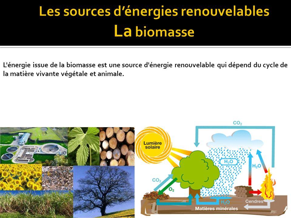 Les énergies renouvelables ont la qualité d'être inépuisables et de dégager très peu de gaz à effet de serre, responsables du réchauffement planétaire