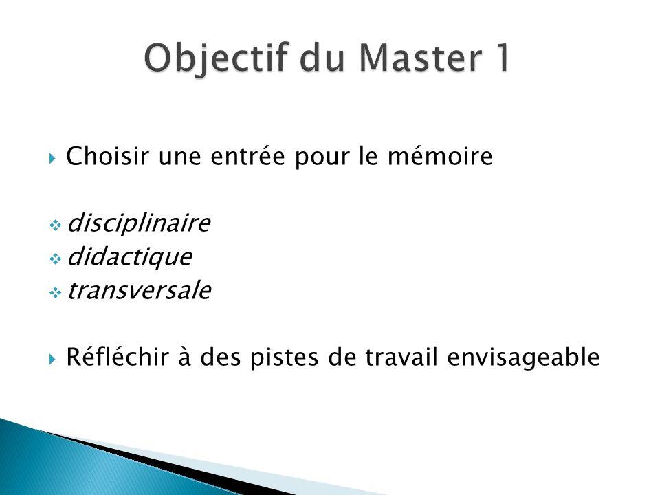  Choisir une entrée pour le mémoire  disciplinaire  didactique  transversale  Réfléchir à des pistes de travail envisageable