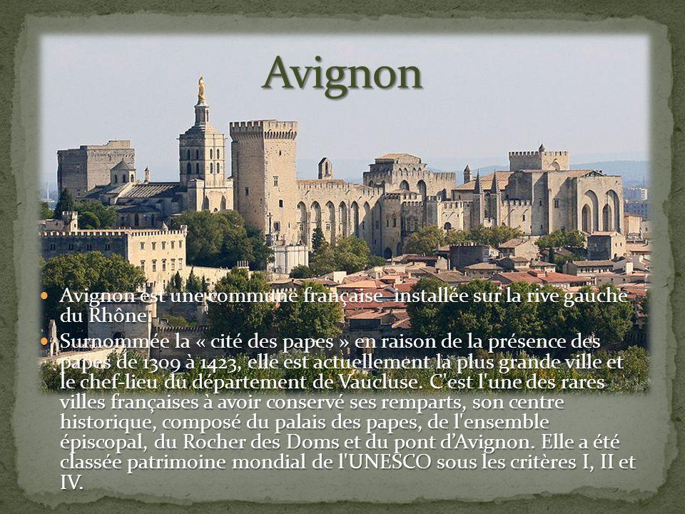 Avignon est une commune française installée sur la rive gauche du Rhône.