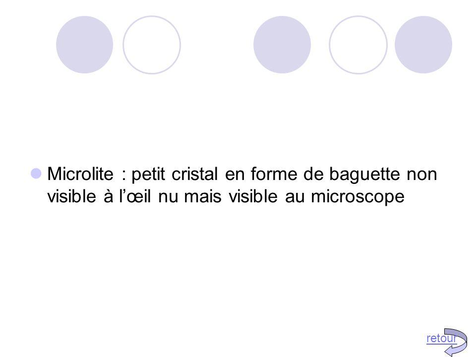 Microlite : petit cristal en forme de baguette non visible à l'œil nu mais visible au microscope retour