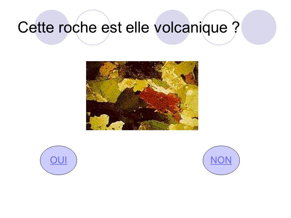Cette roche est elle volcanique ? OUINON