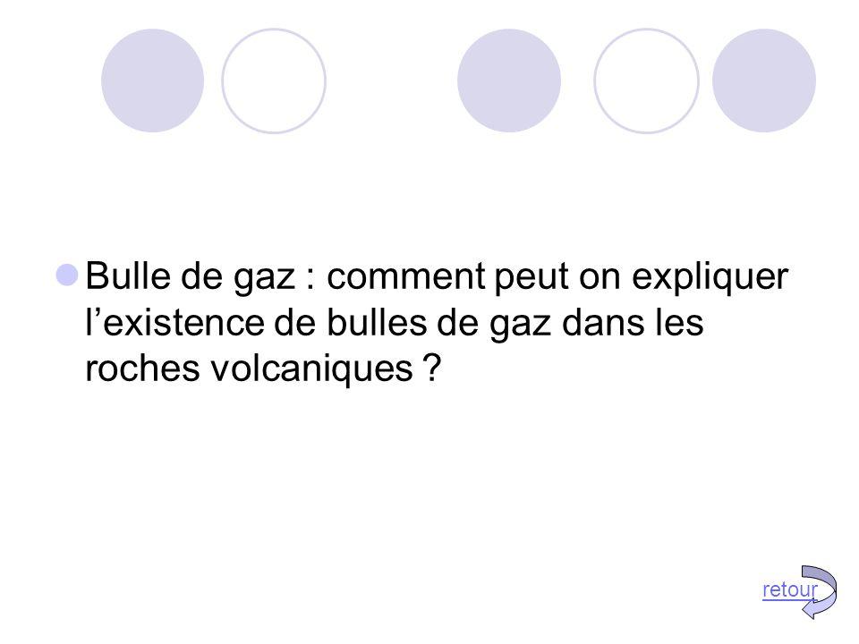 Bulle de gaz : comment peut on expliquer l'existence de bulles de gaz dans les roches volcaniques .