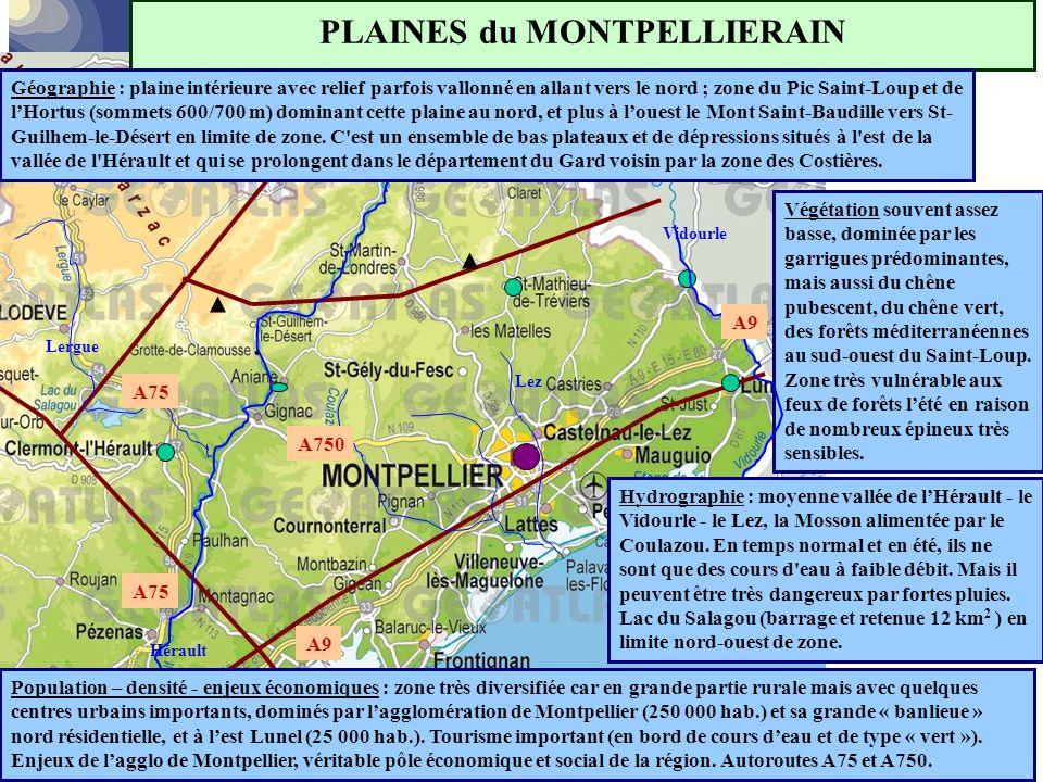 PLAINES du MONTPELLIERAIN Géographie : plaine intérieure avec relief parfois vallonné en allant vers le nord ; zone du Pic Saint-Loup et de l'Hortus (