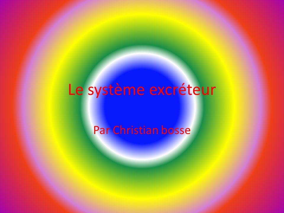 Le système excréteur Par Christian bosse