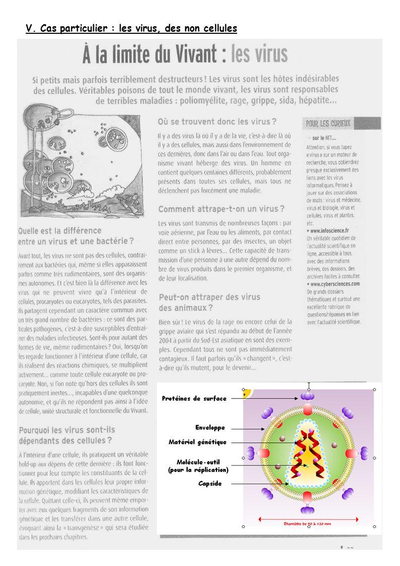 V. Cas particulier : les virus, des non cellules