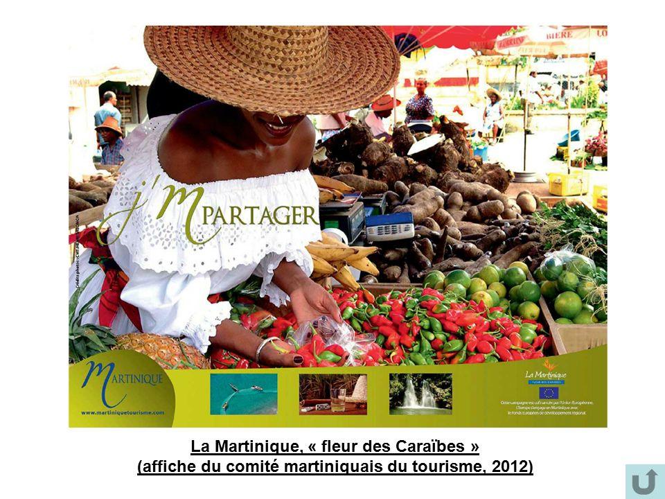 La Martinique, « fleur des Caraïbes » (affiche du comité martiniquais du tourisme, 2012)