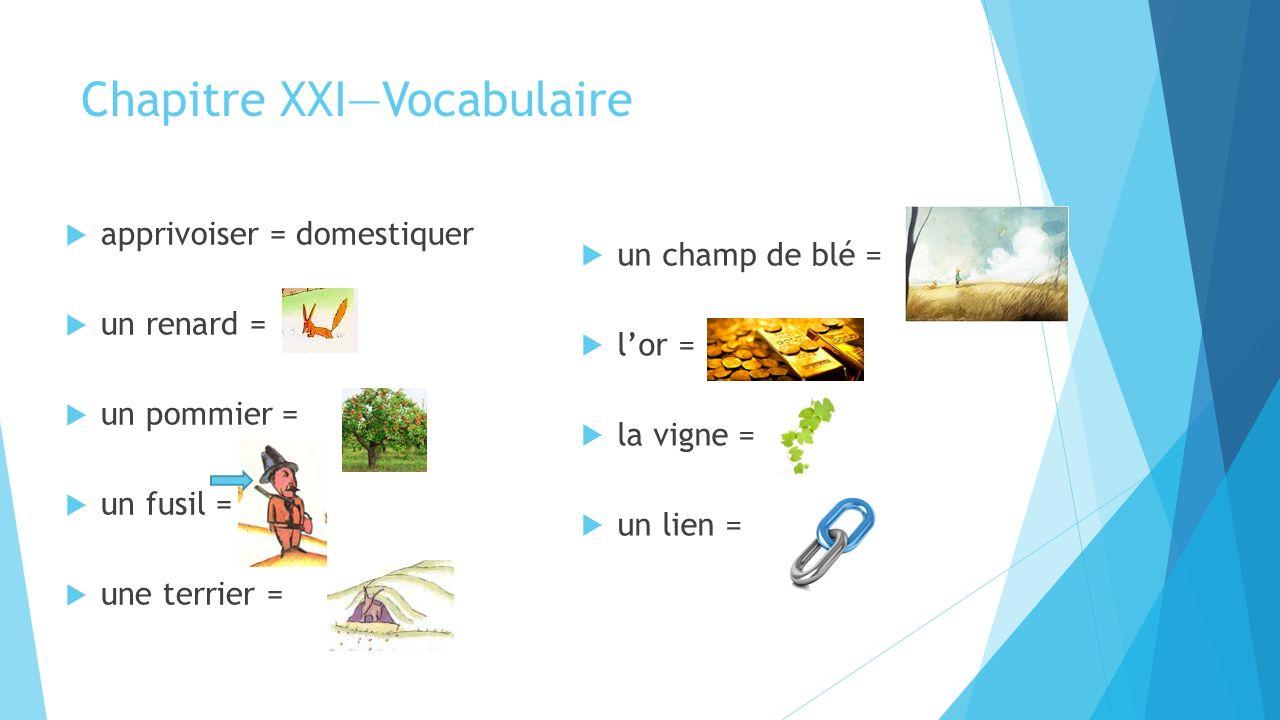 Chapitre XXI—Vocabulaire  apprivoiser = domestiquer  un renard =  un pommier =  un fusil =  une terrier =  un champ de blé =  l'or =  la vigne =  un lien =