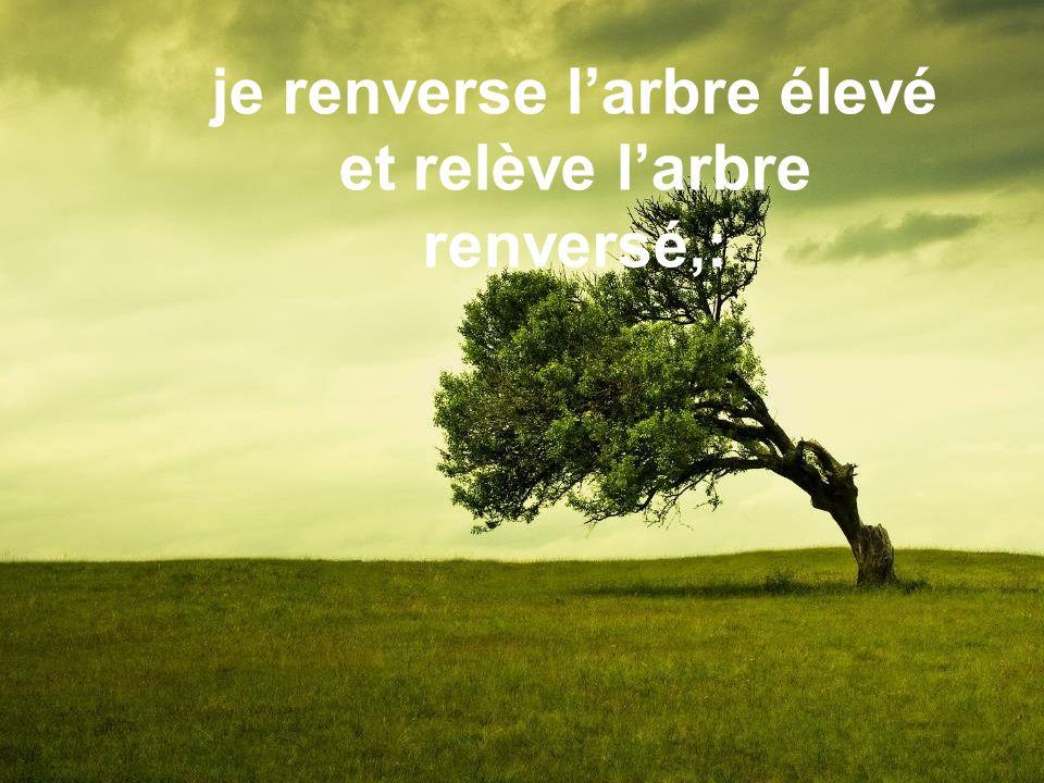 je renverse l'arbre élevé et relève l'arbre renversé,:
