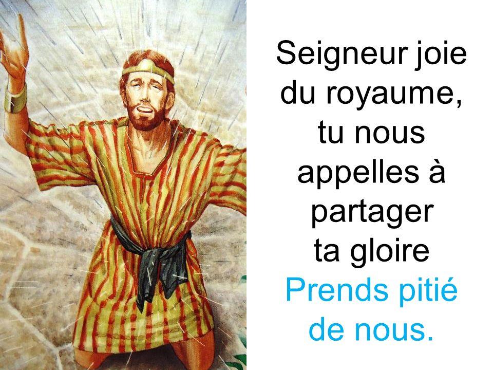 Seigneur joie du royaume, tu nous appelles à partager ta gloire Prends pitié de nous.