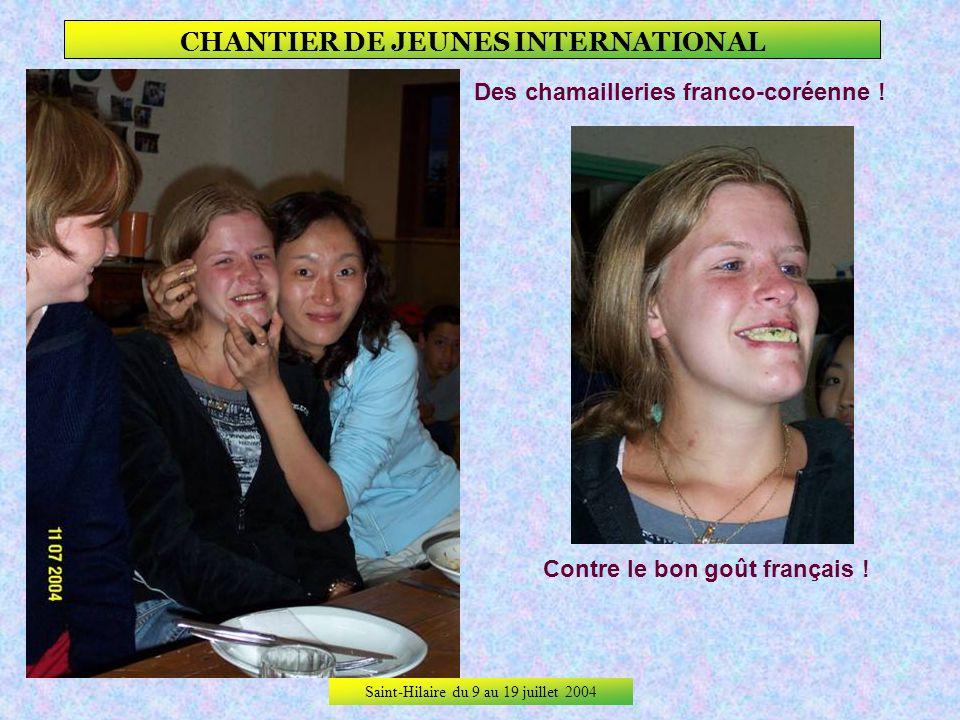 Saint-Hilaire du 9 au 19 juillet 2004 CHANTIER DE JEUNES INTERNATIONAL Des rencontres encore… … et ici un crochet qui na pas survécu !