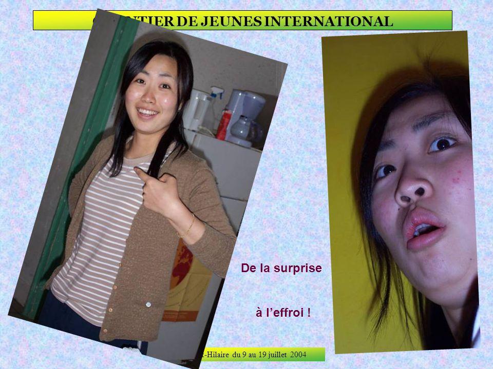 Saint-Hilaire du 9 au 19 juillet 2004 CHANTIER DE JEUNES INTERNATIONAL La surprise !