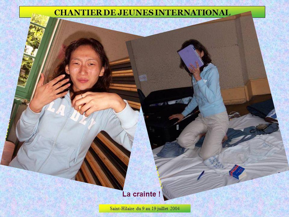 Saint-Hilaire du 9 au 19 juillet 2004 CHANTIER DE JEUNES INTERNATIONAL De la surprise à leffroi !