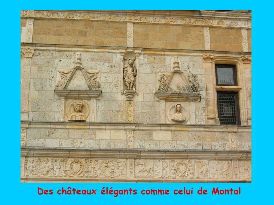 Des châteaux imposants tels celui de Castelnau-Bretenoux