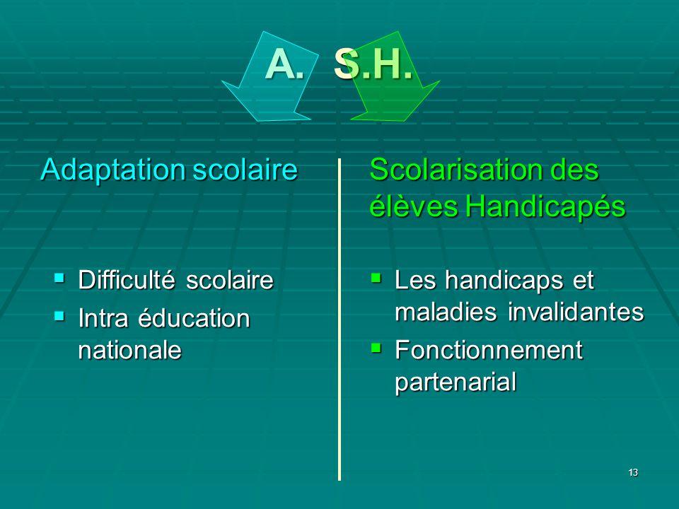 13 A. S.H. Les handicaps et maladies invalidantes Les handicaps et maladies invalidantes Fonctionnement partenarial Fonctionnement partenarial Scolari